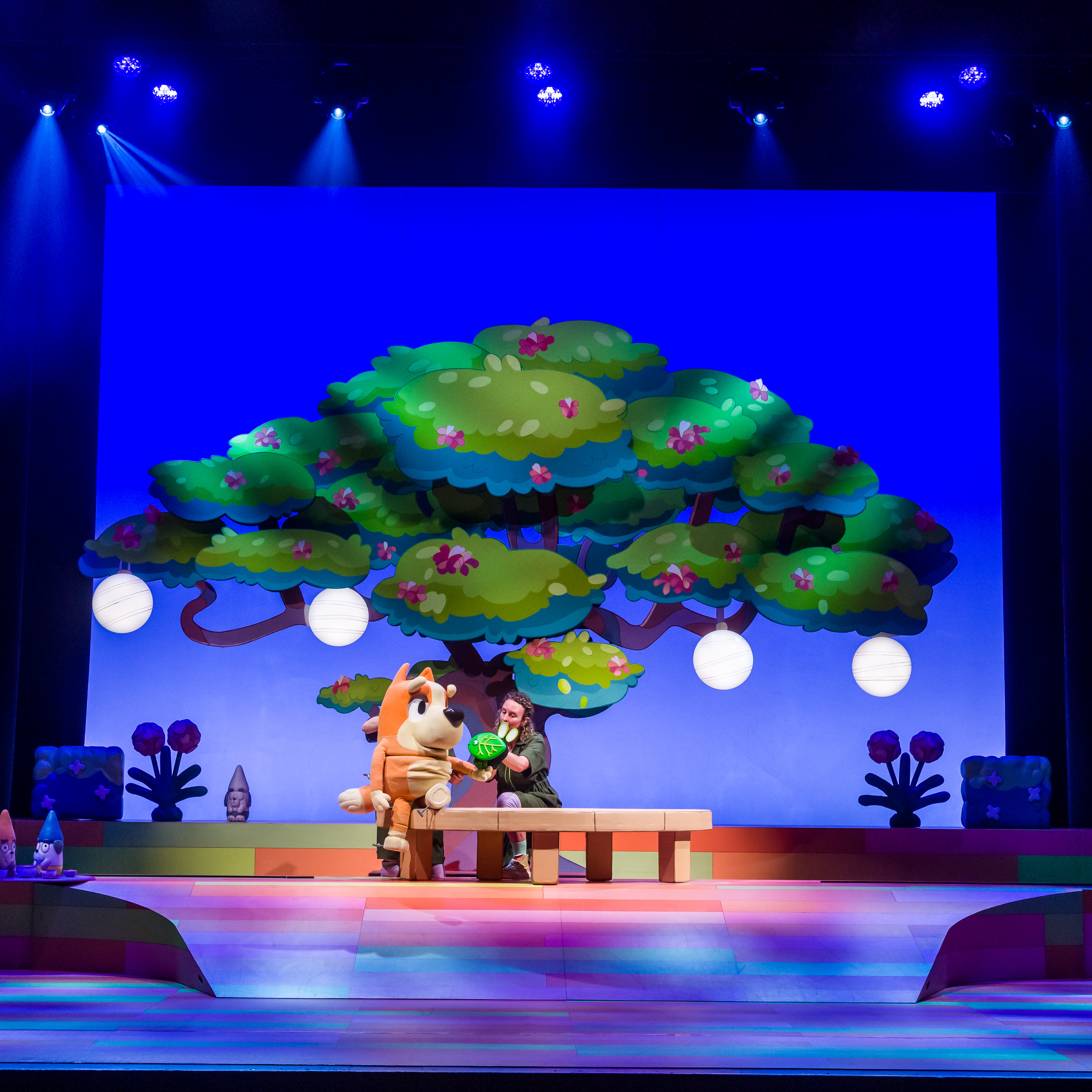 Image of the stage for Blueys Big Play
